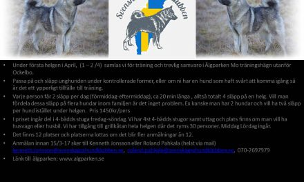 Träningshelg Älgparken i Ockelbo tillsammans med Svenska Gråhundklubben!