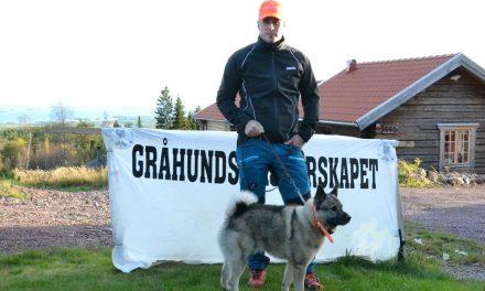 Uttagna hundar till Gråhundsmästerskapet 30/9