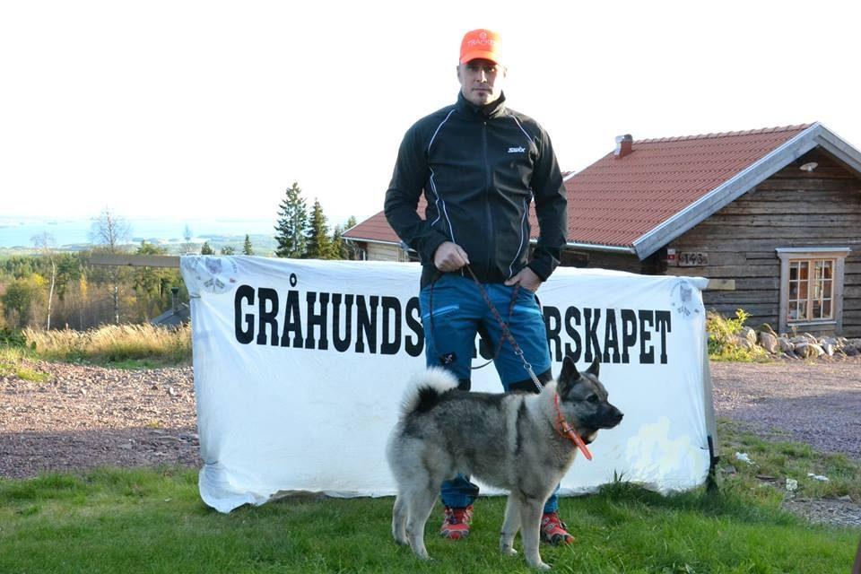 Inbjudan Gråhundsmästerskapet 2017
