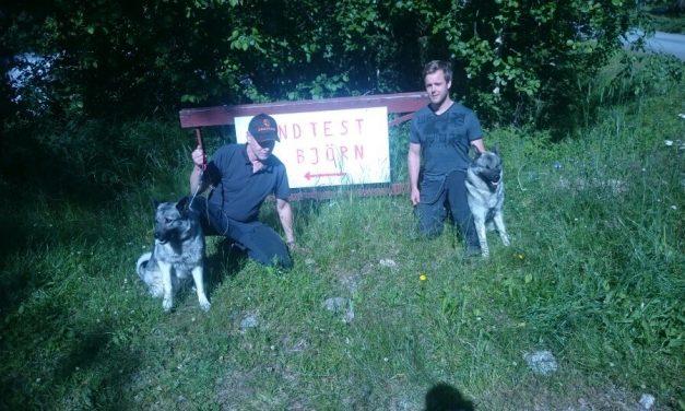 Två hundar godkända på Svenska Gråhundklubbens medlemsträff i Junsele björnhägn.