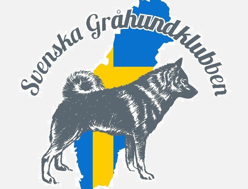 Uttagna hundar till Gråhundsmästerskapet
